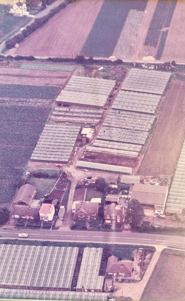 It All Begins With The Purchase Of Sandylands In 1979